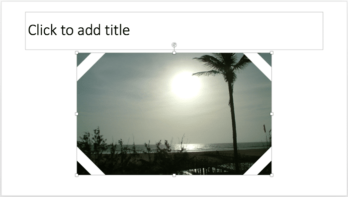 Picture placeholder has a picture fill now