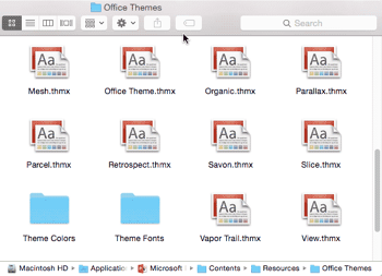 Where are Office Themes and Templates Located?