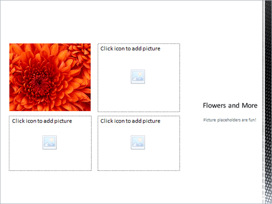 Extra Picture placeholders without pictures