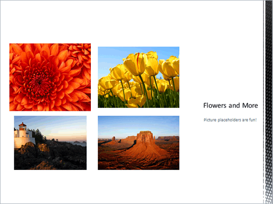 New Picture Slide Layout added with pictures