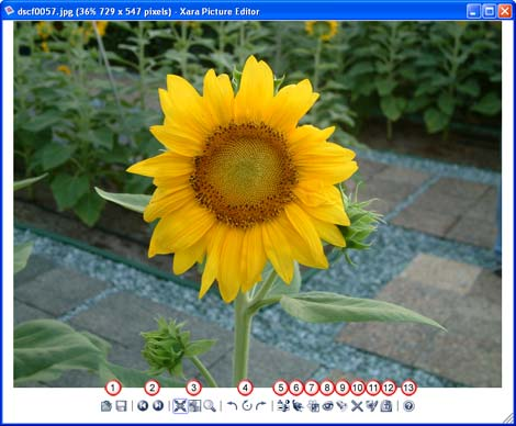 The Xara Picture Editor interface