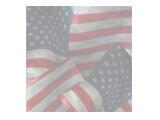 Americana - Extras 02 Premium PowerPoint Templates