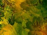 Fall / Autumn - Fall / Autumn 04 Premium PowerPoint Templates